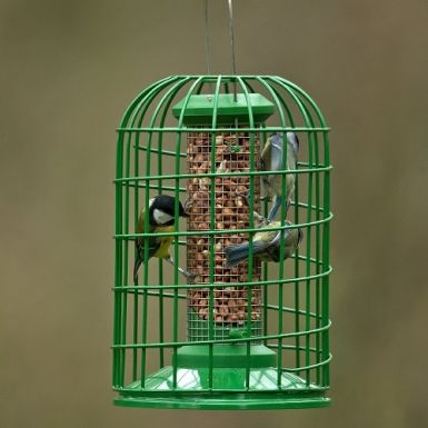 Red Barn Small Classic Peanut Feeder with Guardian
