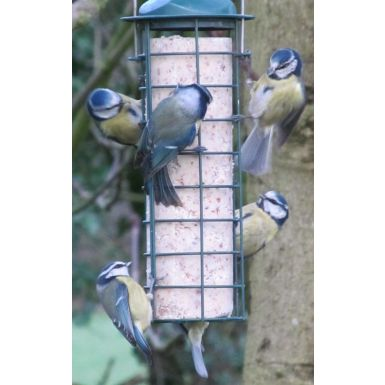 Suet Log feeder with log included